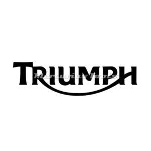Motorfietslak Triumph 1k in spuitbus gemengd Mercurius Tools